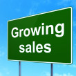 Finance concept: Growing Sales on road sign background — Stock Photo #39124113