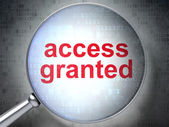 Protection concept: Access Granted with optical glass — Stock Photo