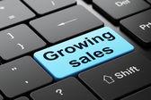 Podnikatelský koncept: rostoucí tržby na pozadí klávesnice počítače — Stock fotografie