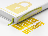 Security concept: book Closed Padlock, Data Privacy on white background — Zdjęcie stockowe