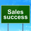 Stock Photo: Marketing concept: Sales Success on road sign background
