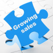 Finance concept: Growing Sales on puzzle background — Stock Photo
