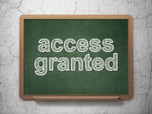 Safety concept: Access Granted on chalkboard background — Stockfoto