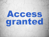 Privacy concept: Access Granted on wall background — Stock Photo