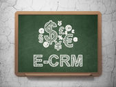 Business concept: Finance Symbol and E-CRM on chalkboard background — Photo