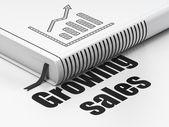 财务理念: 书增长图,在白色背景上的销售增长 — 图库照片