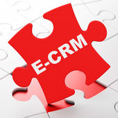 Business concept: E-CRM on puzzle background — Stock Photo