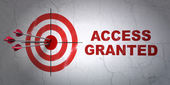 Security concept: target and Access Granted on wall background — Stock Photo