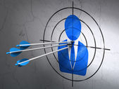 Law concept: arrows in Business Man target on wall background — Stock Photo