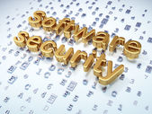 Privacy concept: Golden Software Security on digital background — Stock Photo