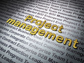 Finance concept: Golden Project Management on Business background — Stock Photo