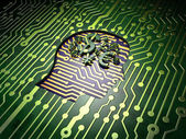 Business concept: Head With Finance Symbol on circuit board background — Stock Photo