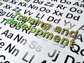 Education concept:  Training and Development on Alphabet background — Stock Photo