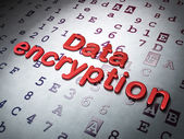 Safety concept:  Data Encryption on Hexadecimal Code background — Stock Photo