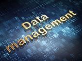 Data concept: Golden Data Management on digital background — Stock Photo