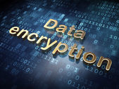 Protection concept: Golden Data Encryption on digital background — Stock Photo