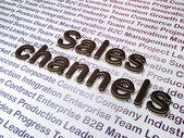 Marketing concept:  Sales Channels on Business background — Stock Photo