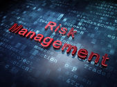 Finance concept: Red Risk Management on digital background — Stock fotografie