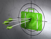 Travel concept: arrows in Bag target on wall background — Stock Photo