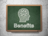 Finance concept: Head With Light Bulb and Benefits on chalkboard background — Stockfoto