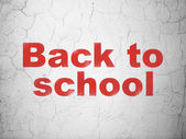 Education concept: Back to School on wall background — Stock Photo