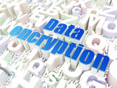 Privacy concept: Data Encryption on alphabet background — Stock Photo