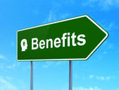 Business concept: Benefits and Head With Light Bulb on road sign background — Stock Photo