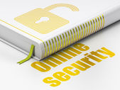Safety concept: book Opened Padlock, Online Security on white background — Foto Stock