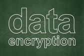 Safety concept: Data Encryption on chalkboard background — Stok fotoğraf