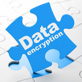 Privacy concept: Data Encryption on puzzle background — Stock Photo