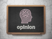 Advertising concept: Head With Light Bulb and Opinion on chalkboard background — Stock Photo