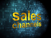 Advertising concept: Sales Channels on digital background — Foto Stock