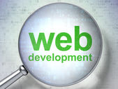 SEO web development concept: Web Development with optical glass — Stockfoto
