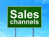 Advertising concept: Sales Channels on road sign background — Foto de Stock