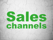 Marketing concept: Sales Channels on wall background — Stock Photo