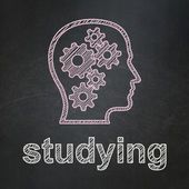Education concept: Head With Gears and Studying on chalkboard background — Stock Photo
