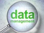 Data concept: Data Management with optical glass — Stock Photo