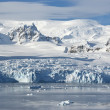 The glaciers on the coast of the western Antarctic Peninsula a s — 图库照片