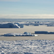Strait between the islands of the Antarctic ice-covered and shug — Stock fotografie