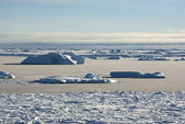 Strait between the islands of the Antarctic ice-covered and shug — ストック写真
