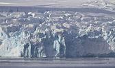 Antarktika yarımadası'nın 1 kıyısında kayma buzullar — Stok fotoğraf