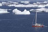 Sailing yacht in Antarctic waters between beautiful icebergs — Stock Photo