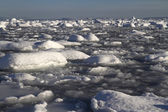 Strait Pinola near the Antarctic Peninsula full of ice and small — Foto de Stock