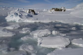 Coastal strip of small icebergs and ice islands frozen Antarctic — Stockfoto