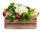 свежие овощи — Стоковое фото