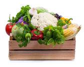 Fresh vegetables — ストック写真