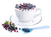 Yogurt and berries, cowberry and bilberry. — Stock Photo