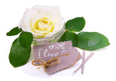 Greeting card with white rose.Love message — Stock Photo
