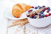 酸奶与牛奶什锦早餐和贝里 — 图库照片
