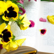 Flowers and petals on book — Stock Photo